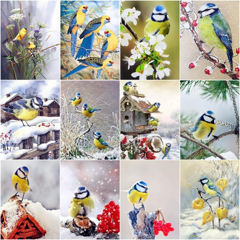 GATYZTORY Diy Pictures By Number Oriole Bird Drawing On Canvas Handpainted Painting Art Paint By Number Gift Animal Kits Home De