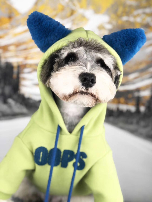 Animal de Estimação Roupas para Cães Quentes para Gato Filhote de Cachorro Roupas para Animais de Estimação Novo Hoodies Inverno Grosso Roupas Cão Esporte Pug Schnauzer