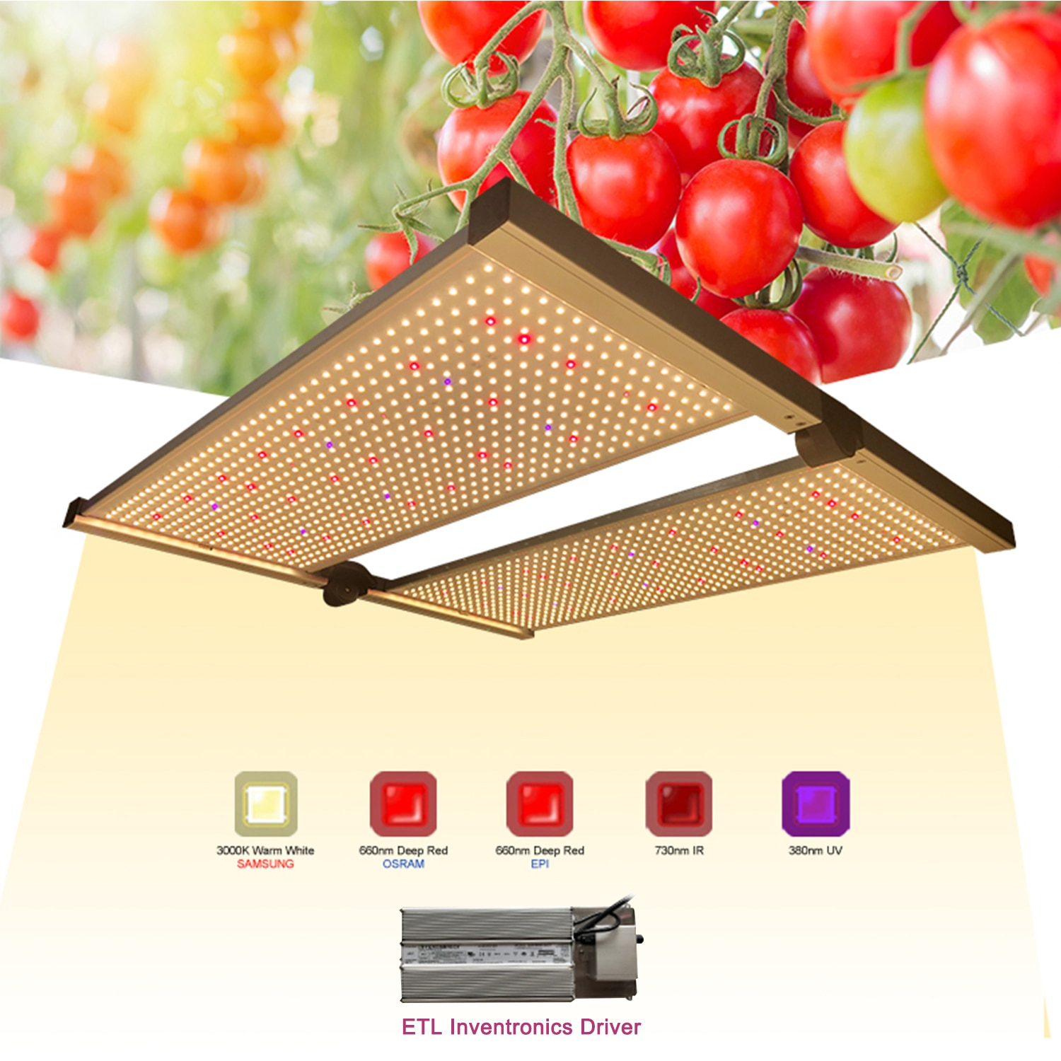 KEBOSHA G1  LED Grow Lights with Full Spectrum Samsung LM301H Osram LG Chips Dimmable Plant Growing Lamp For Indoor Garden Grow