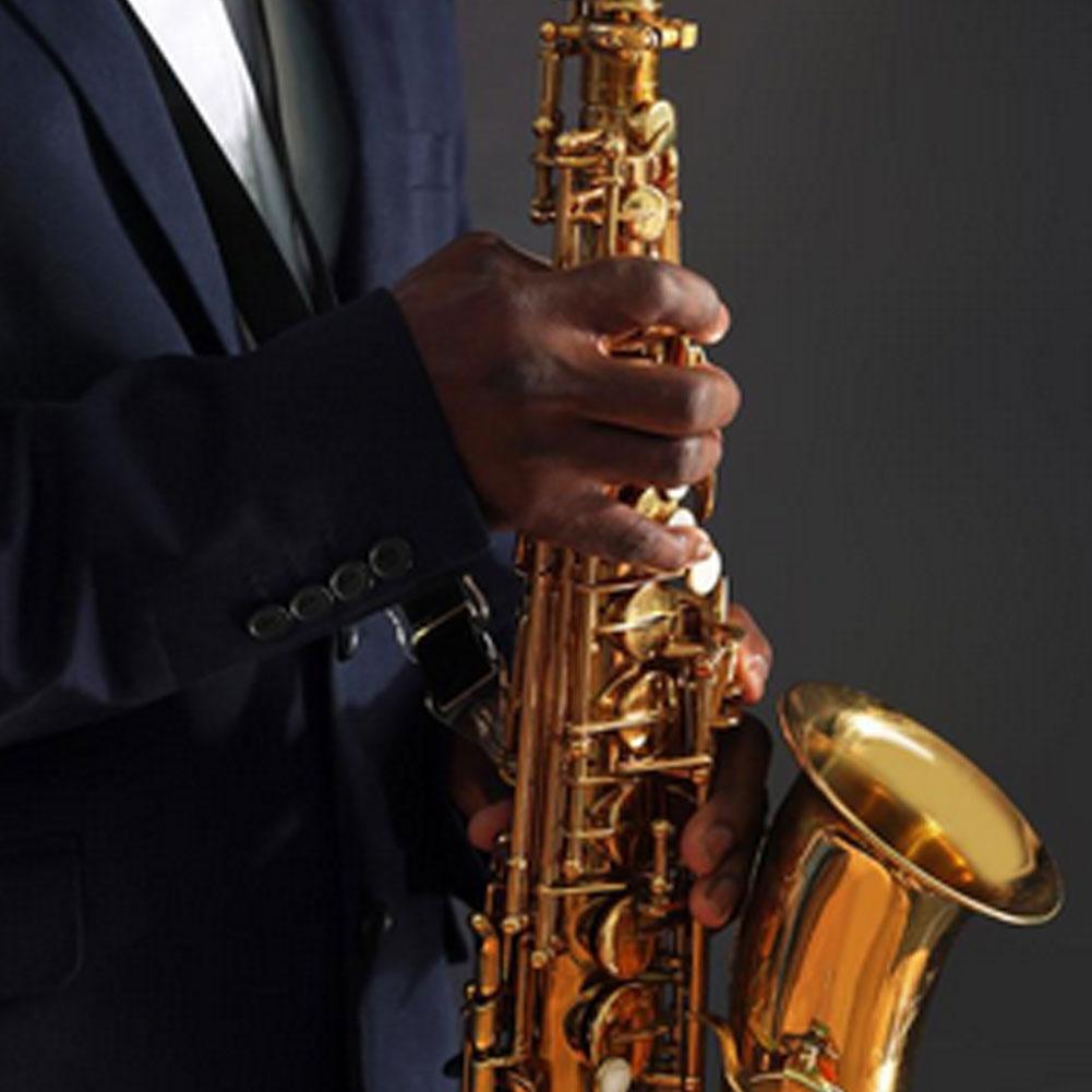 Sax Saxophone Repair Parts Screws + Saxophone Springs Kit DIY Tool Woodwind Instrument Accessories Saxophone Repair Parts enlarge