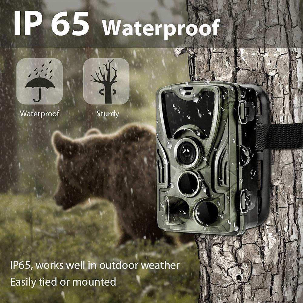 HC801A 16MP HD 1080P cámara de rastreo para caza VERSIÓN NOCTURNA cámaras salvajes IP65 foto Trap 0,3 s gatillo Wildlife cámara de vigilancia