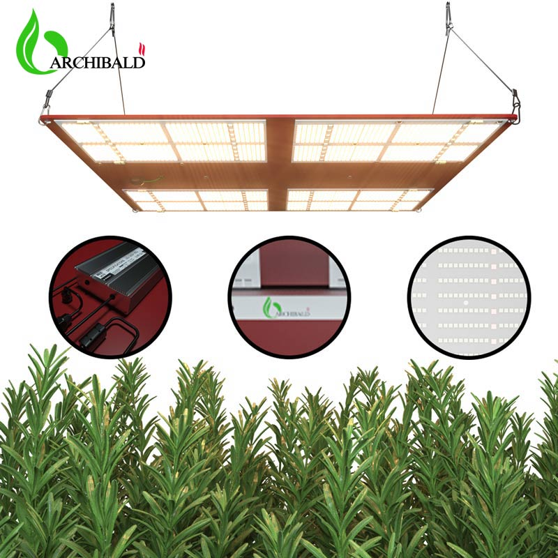2021 New LED Plant Growth Light Samsung Lm301h Tent Indoor Full-spectrum Plant Light Leads The Growth of Hydroponic Seedlings