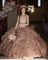 champagne cheap quinceanera dresses ball gown sweetheart long sleeves tulle appliques puffy sweet 16 dresses
