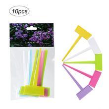 10 pièces marqueurs de plantes colorées jardin bonsaï succulents semis étiquettes signe PVC étiquettes de jardinage pieu sur sol bâtons de peinture