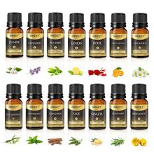 Pure Essential Oil Body Massage Fragrance Oil For Skin Care Natural Plant Aroma Essential Oil Diffus
