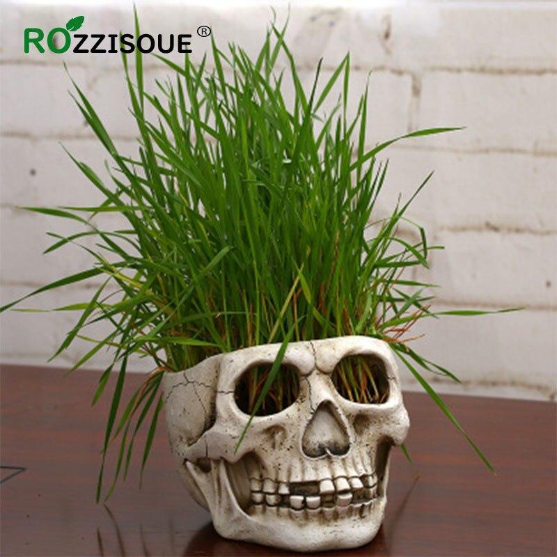 Creative Skull Resin Indoor Plant Pot House Planter Pots for Plants Suculent Pot Decorative Pots for Plants Piante Grasse Maceta