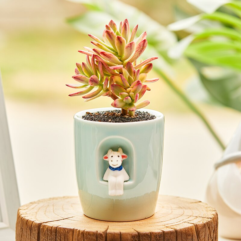 Garden Weather Doll Flowerpot Succulent Plant Pot Simple Lovely Wind Ceramic Creativity Home Decoration Office Decor Small Pot