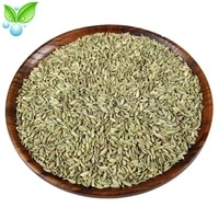 fennelaniseedxiao hui xiangseasoning spiceanisum fruitfennel fruitnourishing the stomach to warm the stomach