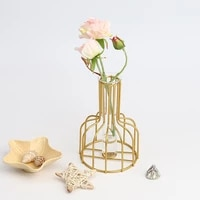 iron glass golden hydroponic vase decoration living room table top decoration dried flower green dill plant container european
