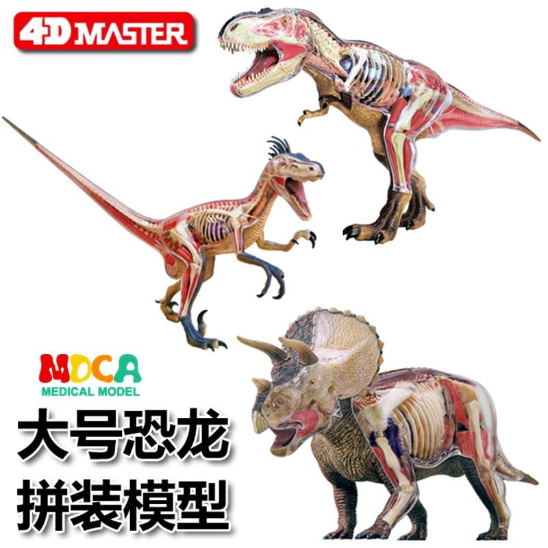 Big Tyrannosaurus triceratops Velociraptor 4d master puzzle Assembling toy Animal Biology Dinosaur organ anatomical model