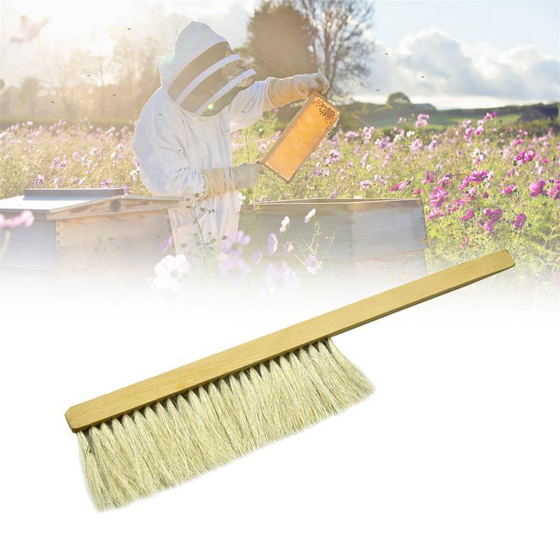 Herramientas de cepillo de apicultura cepillo de barrido de abeja de madera cepillo de dos filas Cerdas de cerdo equipo de abeja cepillo para apicultores herramientas de Apicultura