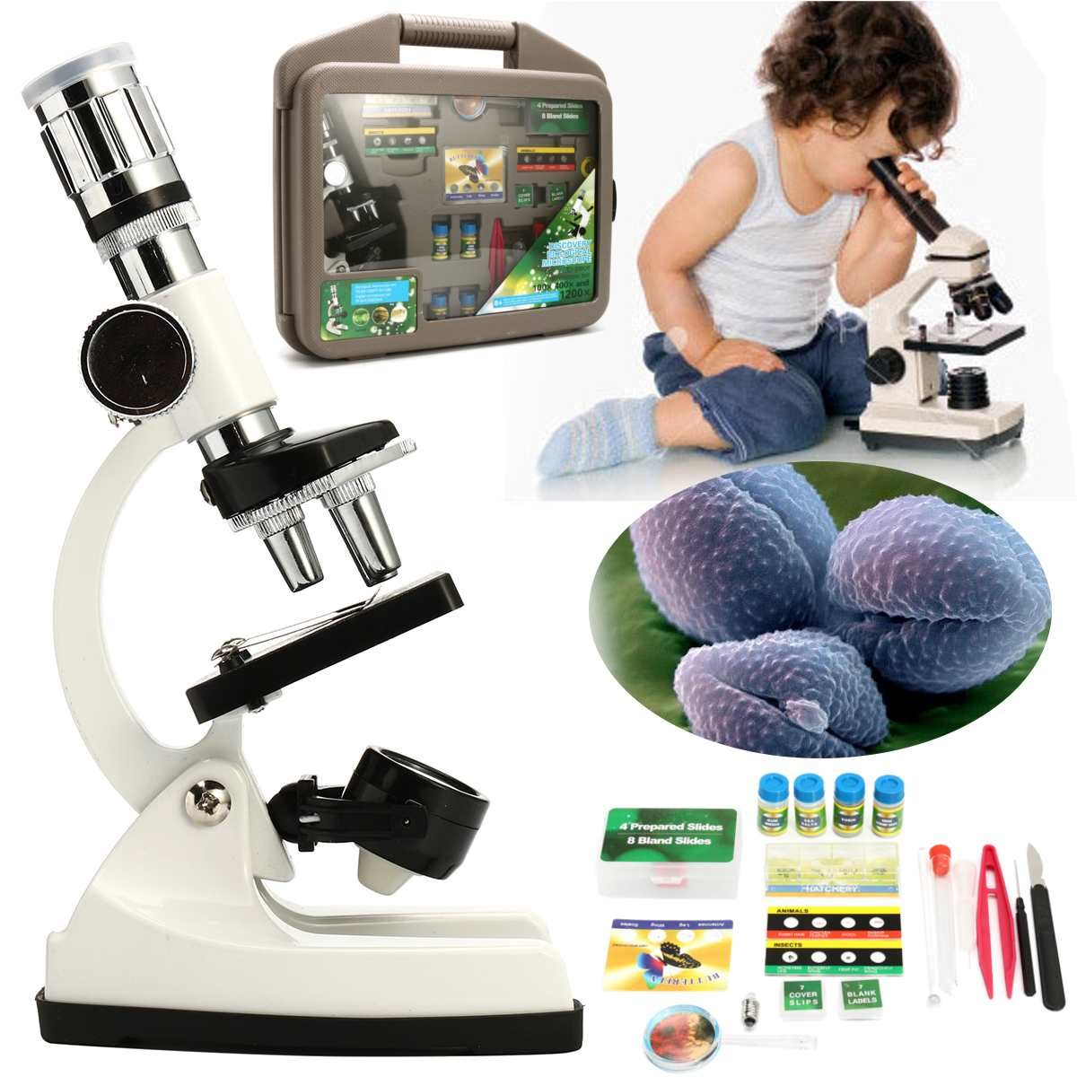 Children Advanced Biological Microscope Discovery Science Tools Set 50X-1200X Kids Home School Lab L