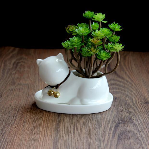 Maceta de cerámica para gato pequeño, maceta de caballo blanco para plantas carnosas, macetas esmaltadas para jardín de escritorio para flores