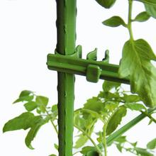 Tige de liaison de Trellis extensible   10 pièces, Tube en plastique de jardinage, concombre tomate, Support de vigne descalade, tige de Support de plante