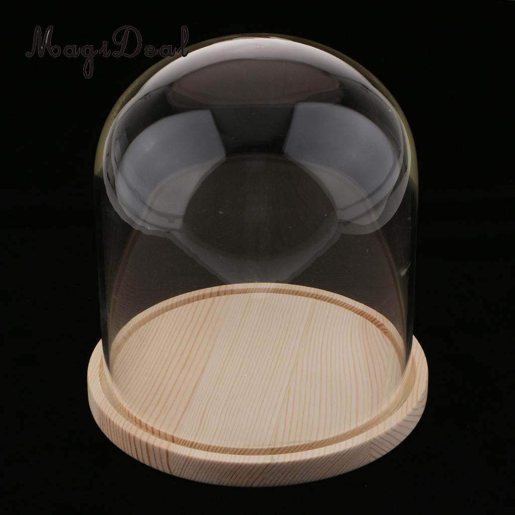 MagiDeal прозрачная стеклянная крышка цветы торт светодиодные фонари дисплей купол Клош с деревянной базой для дома магазин свадебное украшение