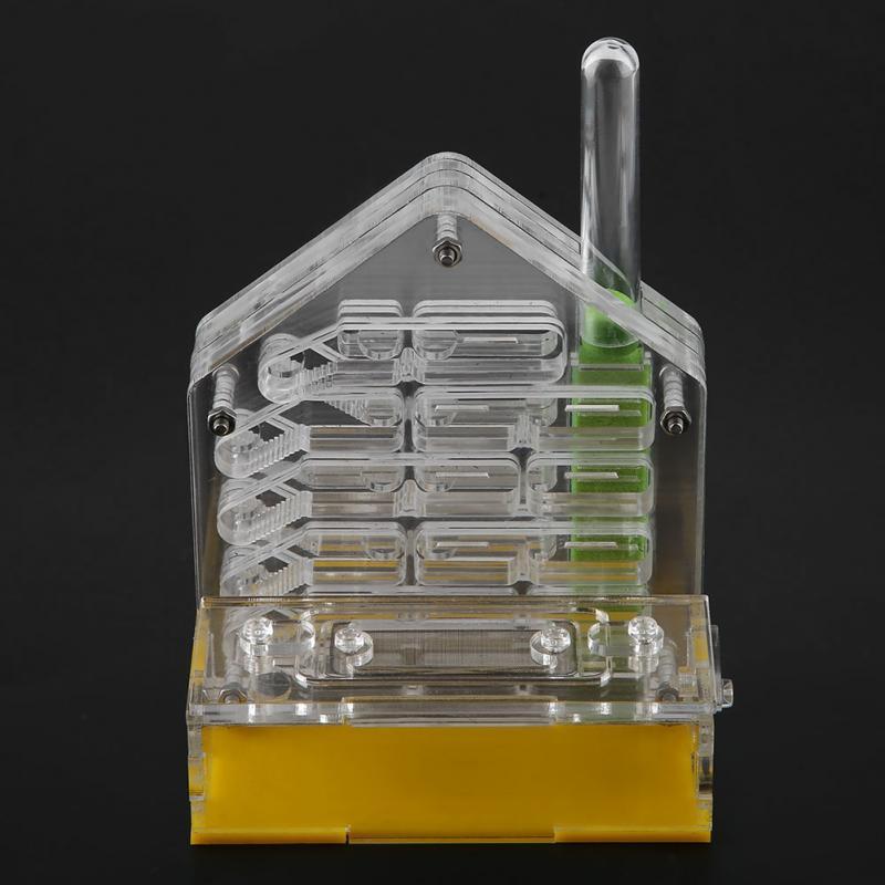 Acrílico hormiga Villa Casa de granja Formicarium para regalo de alimentación de hormigas a su hijo y cultivar su interés científico 123 12 *