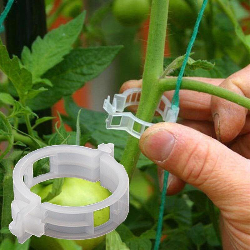 50 enrejados, pinzas para tomate, soportes para conectar plantas, enrejado, enrejado, jaulas