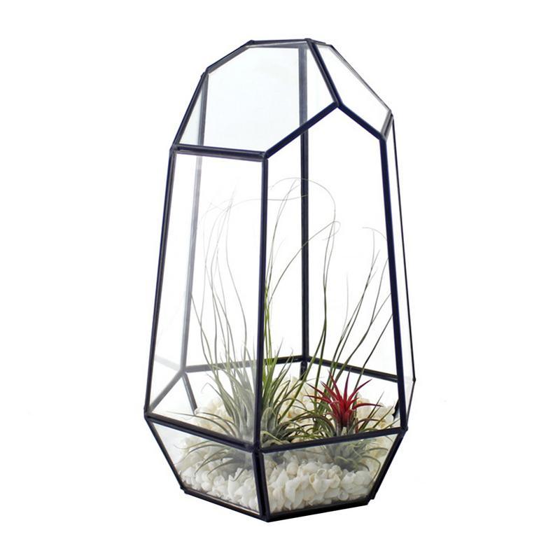 مغلق كوب غير منتظم الشكل تررم مع زارع نباتات الباب هندسية زهرة وعاء النبات منضدة صغيرة بونساي الزواحف الحاويات
