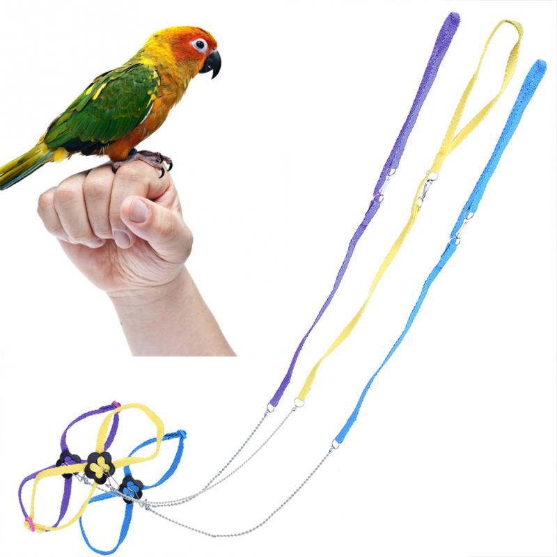 Papagaio ajustável pássaro arreios trela ao ar livre corda de treinamento anti mordida voar banda para pássaro papagaio treinamento e jogar
