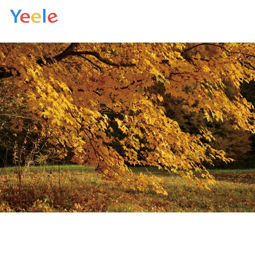 Yeele Autumn Scenery Photocall Fallen Yellow Leaves Photography Backdrops Personalized Photographic Backgrounds For Photo Studio