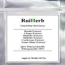 300g-1000 gramm TOP6 Gemischt Pilz Extrakt (Chaga Reishi Cordyceps Maitake Shiitake Lions Mähne) 30% polysaccharid Pulver