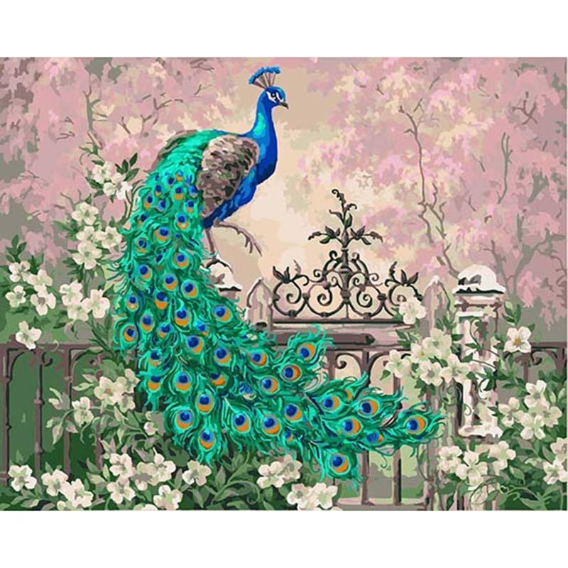 Pavão jardim animal diy pintura digital por números pintura da lona arte da parede moderna presente original decoração casa 40x50cm