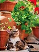 Peinture de diamant carre en point de croix  bricolage  broderie danimaux  chat  decor de maison  perceuse 5D  Kits de mosaique  couture