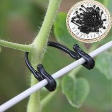 50pcs! Durable en plastique plante tomate Support pince crochet raisins relie vignes treillis attache jardinage câble agriculture Bundle fil
