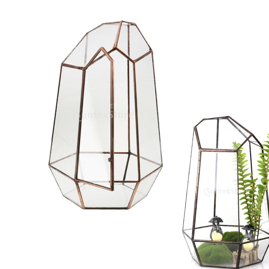 19 سنتيمتر ارتفاع كوب غير منتظم الشكل هندسية Terrarium صندوق منضدية نبات عصاري زارع زهرة الطحلب السرخس وعاء