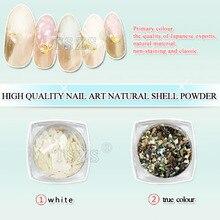 1 bouteille/lot coquillage ongles paillettes poudre de coquillage concassé flocons irréguliers manucure 3D Nail Art décorations