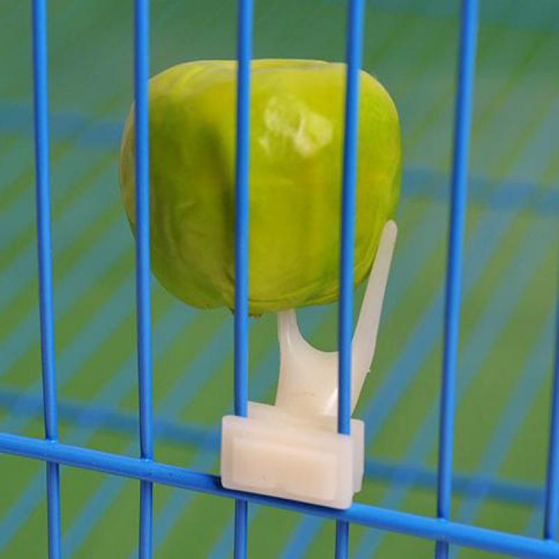 Birds Parrots Fruit Fork Pet Supplies Plastic Food Holder Feeding On Cage Pet Supplies 23