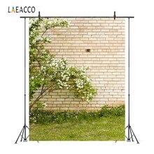 Laeacco printemps pâques fleurs brique mur prairie Yard Portrait photographie arrière-plans arrière-plans photographiques pour Studio Photo