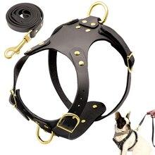 مجموعة مقود طوق كلب على شكل كلب من جلد طبيعي غير قابل للسحب يسخر الكلاب خطوة في طوق طوق الحيوانات الأليفة للكلاب الصغيرة والمتوسطة بيتبول