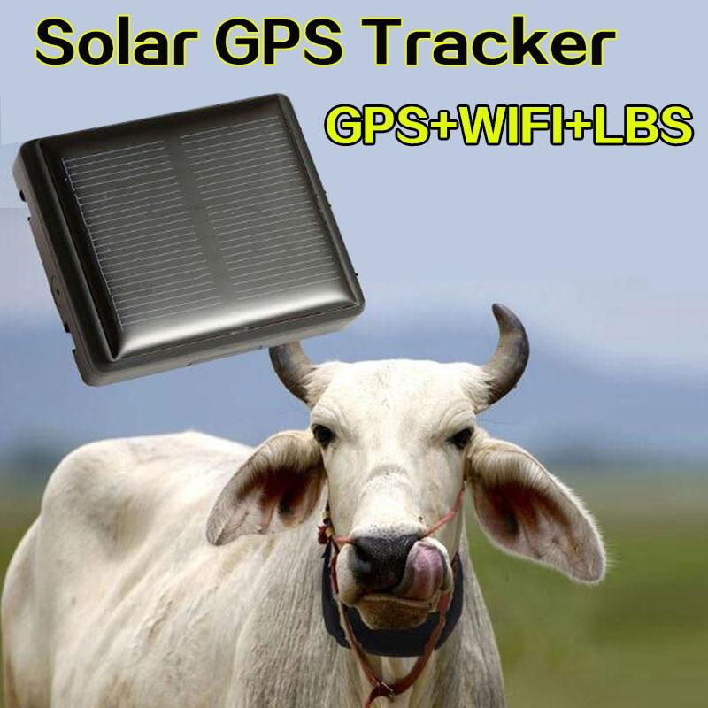 RF-V26 + impermeable IP66 mini gps solar vaca animal TIEMPO DE Larga modo de reposo gps tracker Vida Libre platfrom soporte app