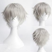 Ensemble Stars Oogami Koga 30cm perruques Cosplay courtes droites pour homme garçons déguisement animé fête résistant à la chaleur perruque synthétique gris