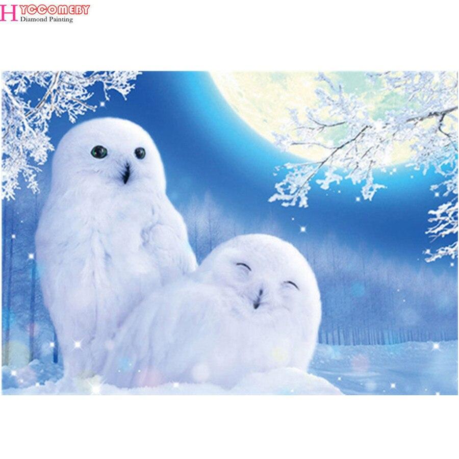 5d diy pintura de diamante cuadrado completo daimond pintura accesorios ull bordado de diamantes redondos animales stich liverpool animal owl