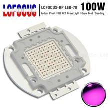 La culture hydroponique 100 W 200 W 300 W 500 W élèvent lampoule de lampe de lépi SMD de puce LED pour lusine dintérieur de tente bricolage 100 200 300 500 W Watt LED élèvent la lumière