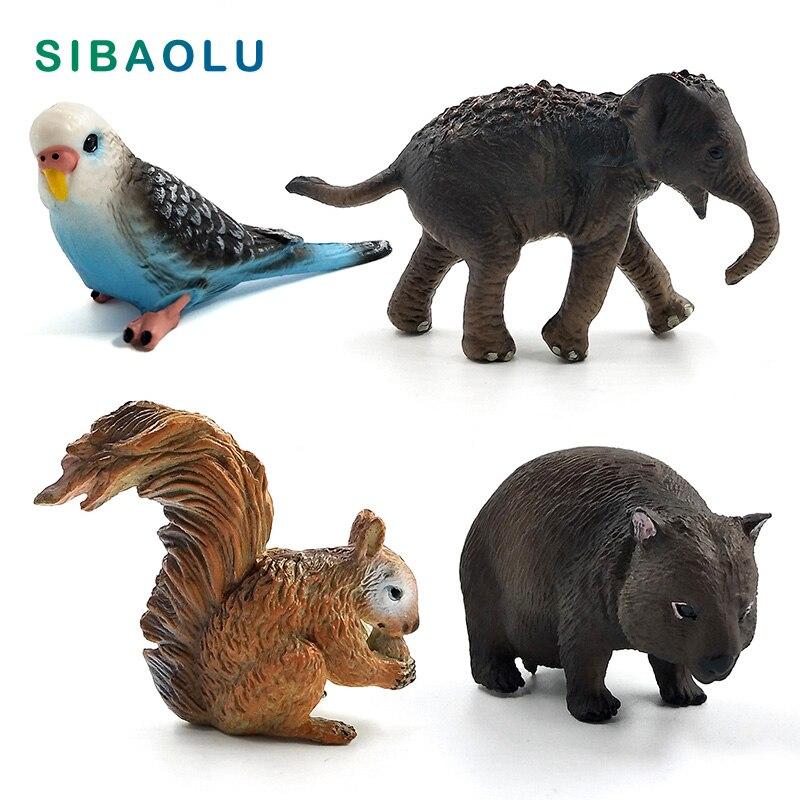 Simulación de ardilla, elefante, loro, Wombat, Animal, modelo de figura para decoración del hogar, figura en miniatura para decoración de jardín, accesorios modernos
