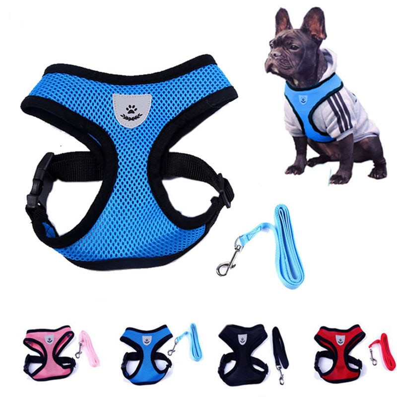 Transpirable reflectante malla pequeño perro Gato conjunto de arnés y correa cachorro chaleco Rosa rojo azul negro para Chihuahua Yorkie S, M, L