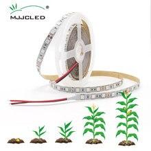 2M 3M 5M LED Led bande de lumière de croissance SMD 5050 étanche IP65 DC12V bricolage lampes de croissance pour serre hydroponique plante en croissance