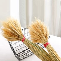 Bouquet de fleurs sechees naturelles  50 pieces lot  oreilles de ble artificielles  pour fete de mariage  decoration de maison Scrapbook
