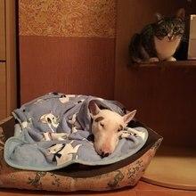 Polaire douce chat Bullterrier bouledogue couvertures pour lit tapis maison chats chiens lit couverture canapé lit couverture