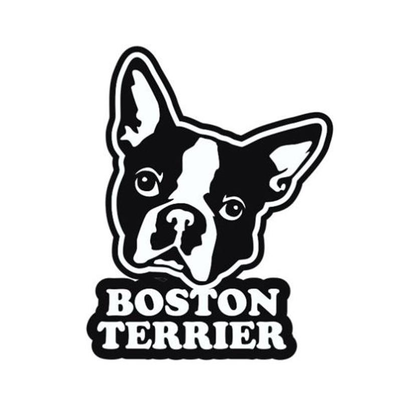 9,6 cm * 12,2 cm Boston Terrier Accesorios Estilo de coche pegatina de vinilo S4-0745