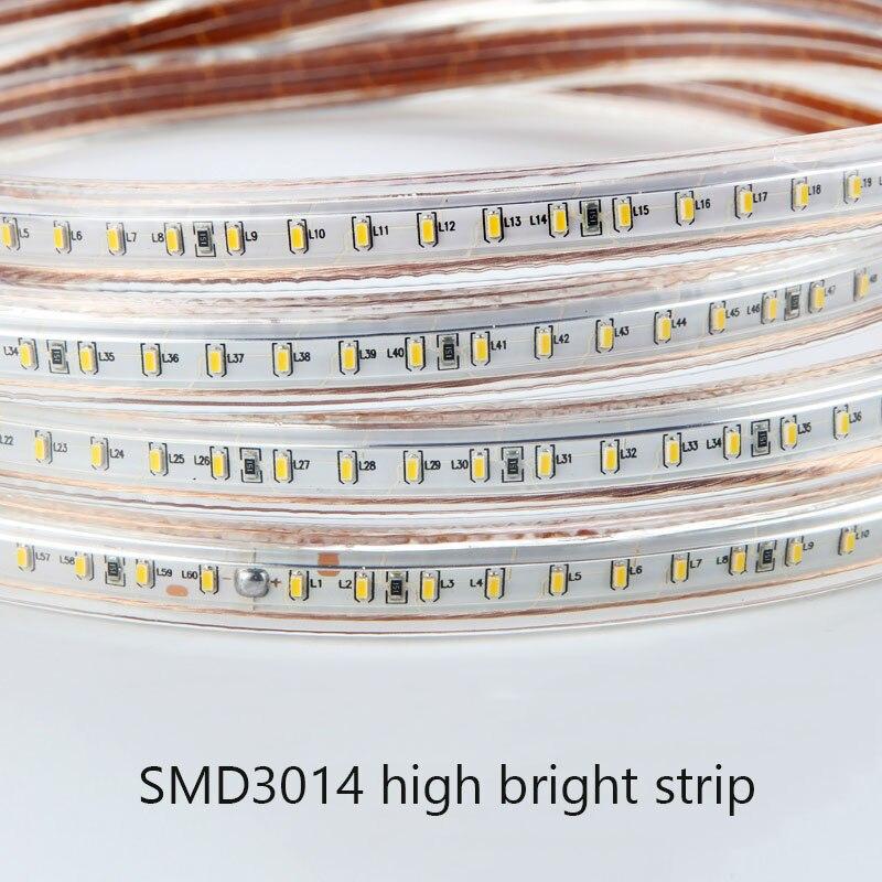 Tira de luz led de 220v smd 3014 impermeable IP67 cuerda de cinta azul blanco cálido para exteriores con enchufe de alimentación regulable 120 Leds/M lámpara Flexible