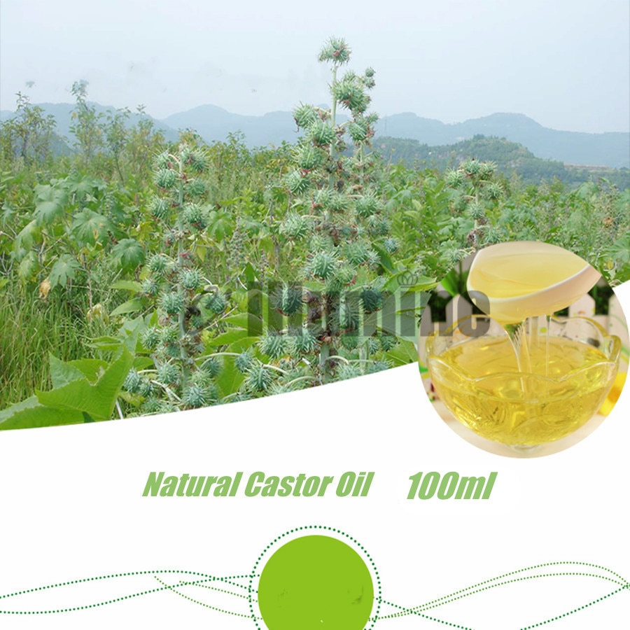Pure Natural Castor Base Oil Edible Massage Spa Pedicure  Handmade Soap Raw Material Skin Hair Care Beauty Salon 100ml