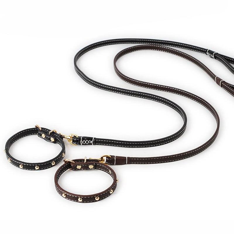 Collar ajustable para perros y gatos pequeños con correa para caminar para perros y perros pequeños de cuero genuino con correa para pasear para perros y perros de 125x1,5x0,4 cm con cuello de 27 a 34cm de Gato
