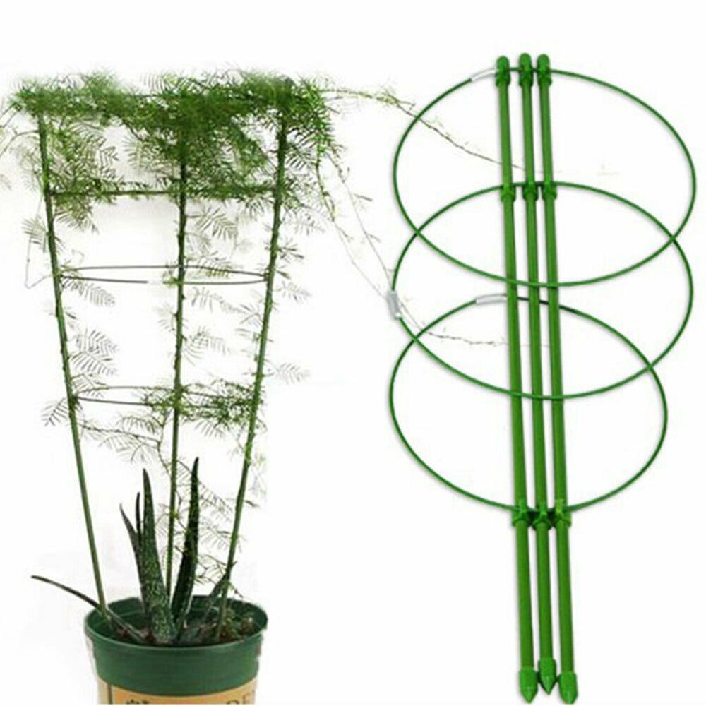 Pokich Durable Climbing Vine Flor Cremalheira Decorativa Ferramentas de Jardinagem de Plantas Hortícolas Frame Suporte 45/60/75 cm