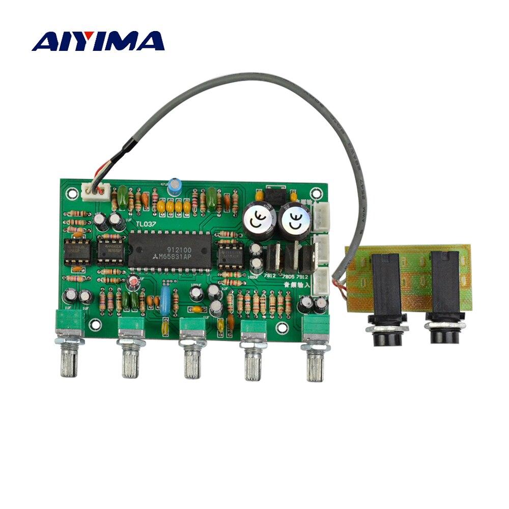 Усилитель звука Aiyima, 1 шт., NE5532, микрофон для караоке, Плата усилителя баса, твитер, голосовое управление
