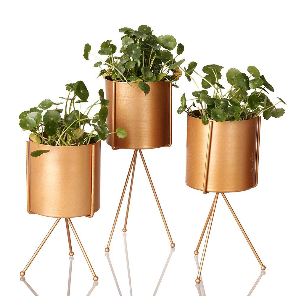 Золотой цветочный горшок из нержавеющей стали, цветочный горшок, суккуленты, контейнер, бонсай, домашний стол, украшение для сада