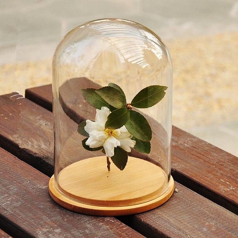 قبة زجاجية ، غطاء جرس ، غطاء زهور ، جرس ، قاعدة خشبية ، ديكور منزلي ، مزهريات ، شفافة ، فارغة